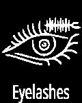 icon_2eyelashs